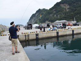 【和歌山市内釣果情報】出勤前に雑賀崎に行って来ました。