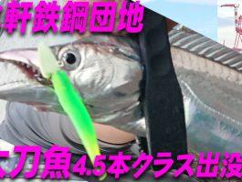 水軒鉄鋼団地 太刀魚4.5本!?クラス出現!?