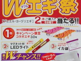 DUEL/YO-ZURI  【2019 秋Wエギ祭り】 開催!!