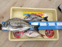 紀州釣りでチヌ