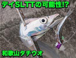 和歌山タチウオ釣行「SLTT」