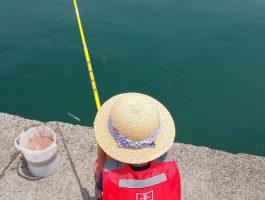 田ノ浦にサビキ釣りへ